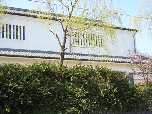 Yanagawa36