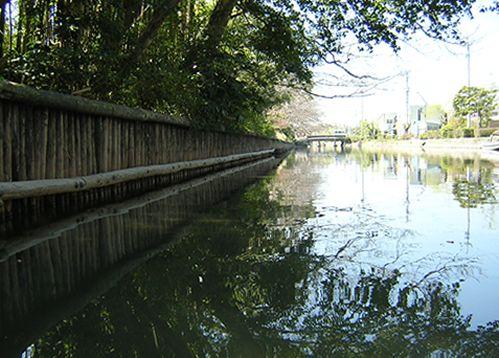 Yanagawa49